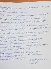 Дюльдина Наталия Анатольевна о работе Фатеевой Натальи