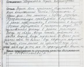 Елаева Ирина о работе Дворниковой Ларисы