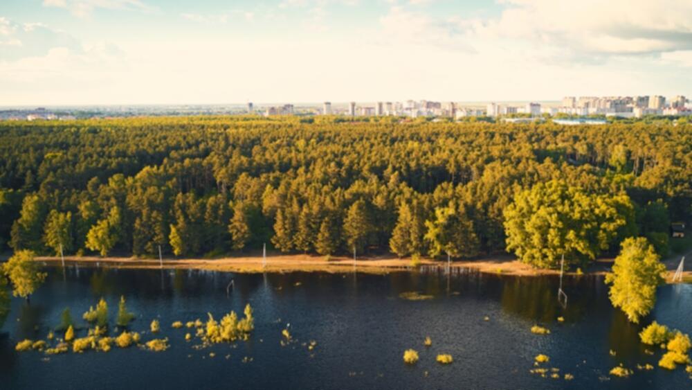 Квартиры от 2 530 000 рублей на берегу озера