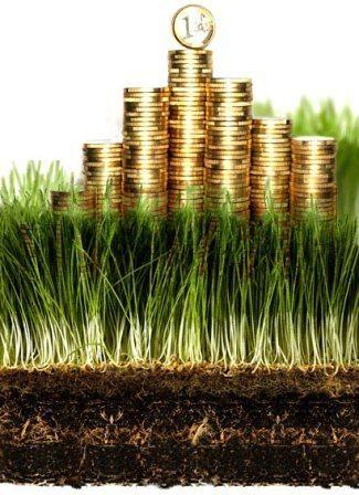 Для инвесторов в землю – правильно выбираем участки